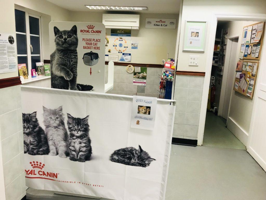 NEW feline friendly waiting area