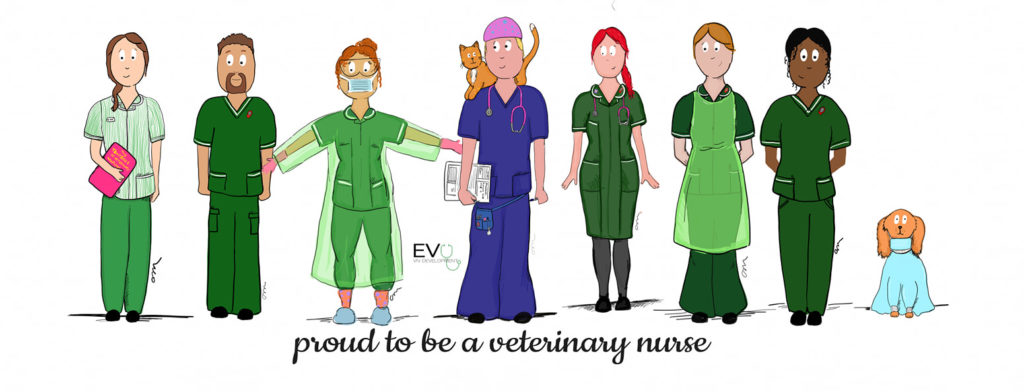 Veterinary Nurse Awareness Month 2019